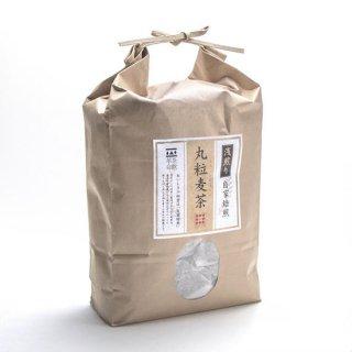 自家焙煎麦茶〈浅煎〉 丸粒麦茶15gx60pシリーズ/いさし園の商品画像