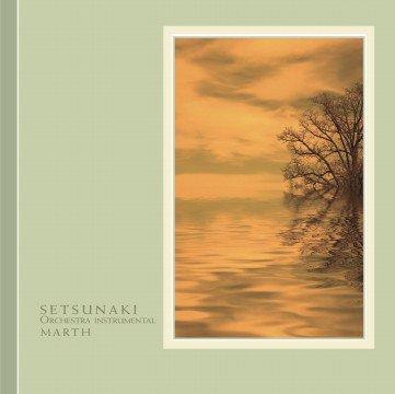 ヒーリングCD SETSUNAKI オーケストラインストゥルメンタル