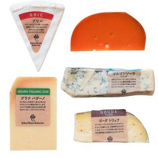 チーズ おつまみ セット 詰め合わせ お得 ワインに合う 5種セット ブリー ゴルゴンゾーラ ゴーダトリュフ ミモレット ブルーチーズ 食べ比べ ワイン アソート つまみ お取り寄せ 盛り合わせ
