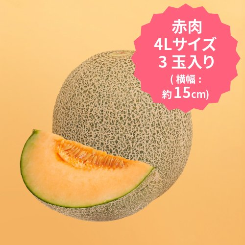 【2022年度事前予約受付中】J 飯岡メロン 赤肉 4Lサイズ×3玉セット