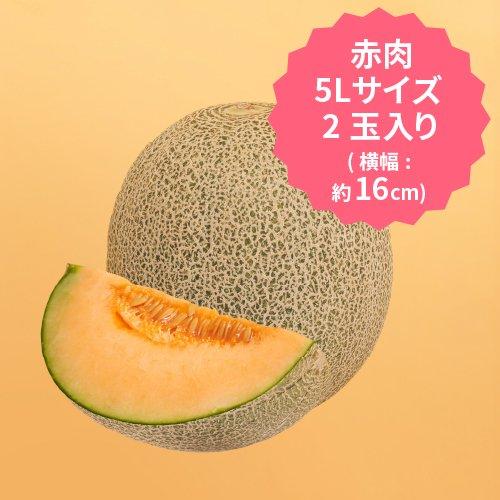 【2022年度事前予約受付中】K 飯岡メロン 赤肉 5Lサイズ×2玉セット