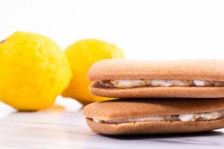 レモンクッキークリームサンド(5個入)